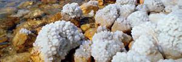 dead sea mineral salt